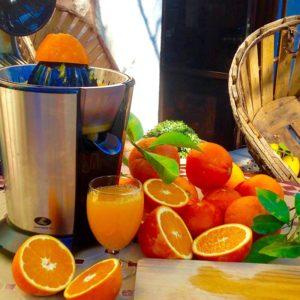 finca hotel cas sant mallorca naranjas